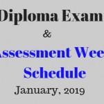Diploma Exam (1)